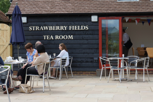 New House Farm Cafe, Horsham<br />